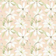 Olivia Blossom