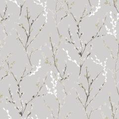 Willow Birch White